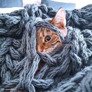 Dzisiaj ilustracja do pytania - skąd się biorą koty? Koty,  jak widać wychodzą z pledów i koców. 😄 To wiele wyjaśnia 🐈🐈🐈  #ramithecat #catstagram #catphoto #catsandcrafts #catlovers #catinvasion ##catsandknitting #catsofinstagram #catlove #knittingaddict #knittedblanket #handmade #bulky #bulkyblanket #chunkyblanket #interiordesign #homeandgarden #decoration