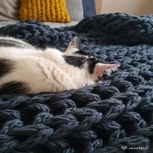 Koc w rozmiarze XXL. Wszystko w nim uwielbiam. Ścieg angielski luźny i mięsisty, jego ciężar i kolor. Wymagał ogromu pracy. O tak, to było wyzwanie. Przesłuchałam przy nim prawie całą Trylogię husycką. 🙂 Ale, warto było. I tak patrzę sobie teraz na te koty beztrosko na nim śpiące.  Nieświadome i zadowolone.   #xxl #koc #recznierobione #robionenadrutach #chunkyblanket #bulkyyarn #bigblanket #yarnlove #homedecor #decoration #bedroom #catsandcrafts #catsandknitting #cataproved #catsworld #homedecoration #diyhomedecor #montsicrafts #freddiethecat #jeans #cozyhome